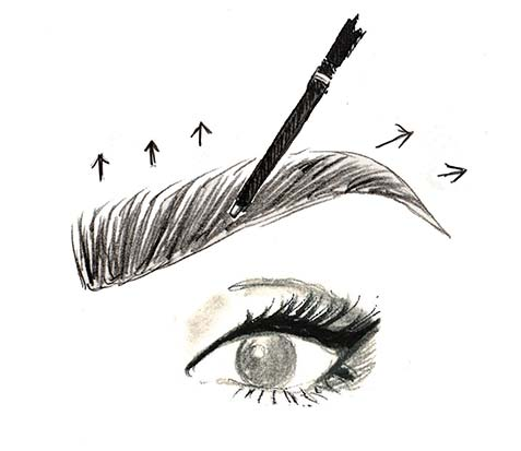 how to draw perfect brows step by step